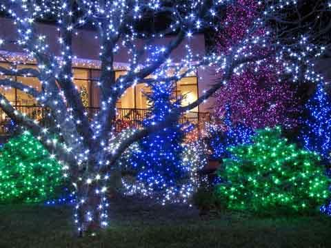 christmas lights around dallas